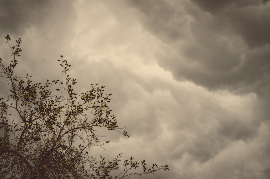 oncoming storm 9-19-1