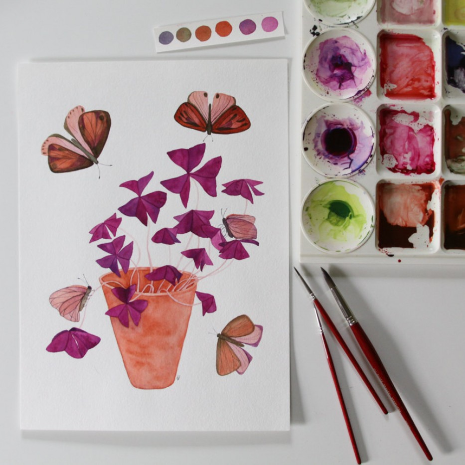 Anne Butera Oxalis and Butterfly