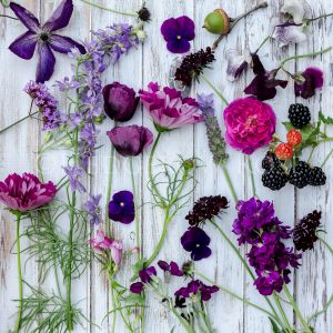 Botanicals in Purple Thumbnail