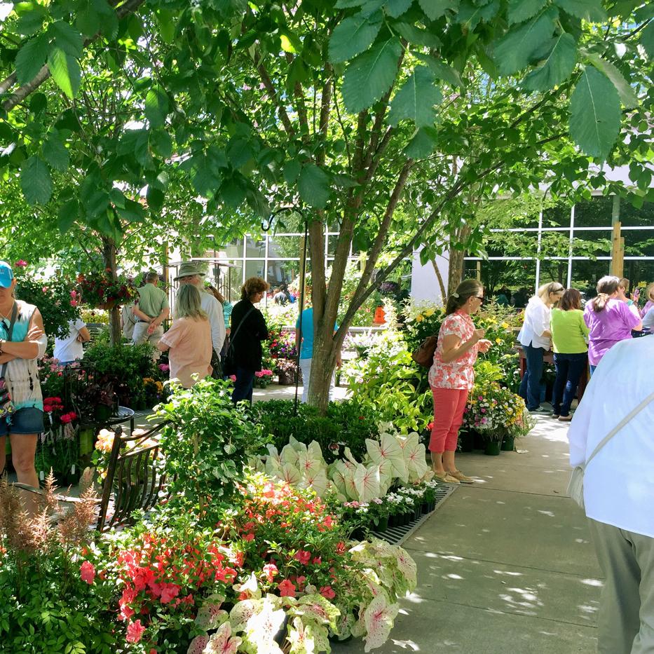 Hendersonville Garden Jubilee 7