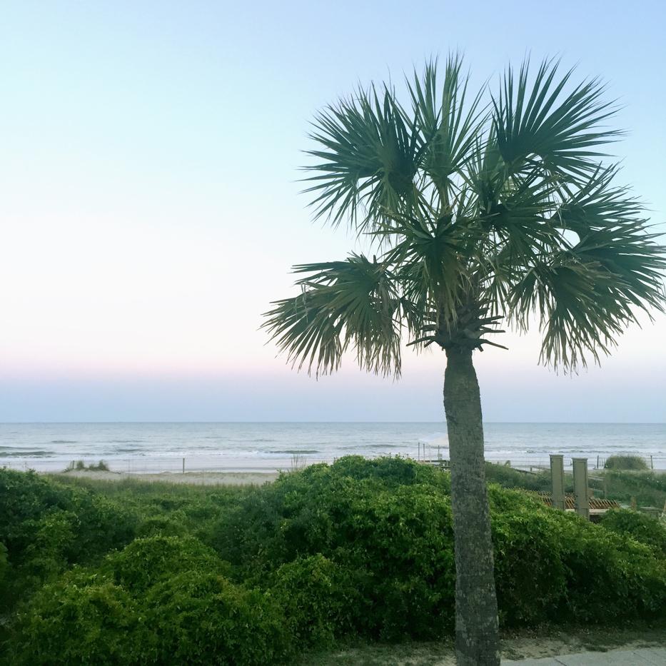 Isle of Palms 1