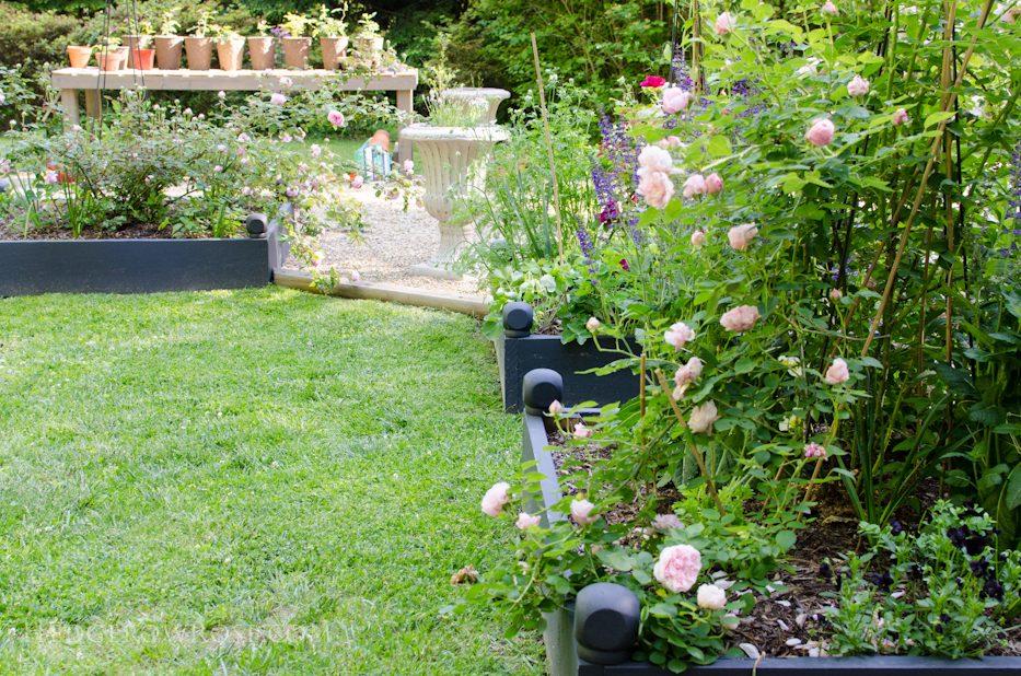 garden 5-17-5